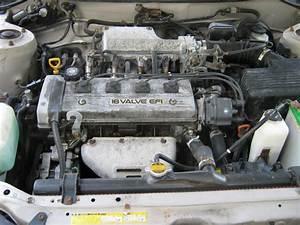 1994 Toyota Corolla - Pictures