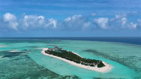 cocoon maldives official video youtube