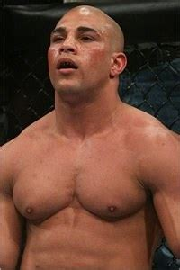 hayder quot hulk quot hassan mma stats pictures news videos