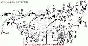 Honda Xl250 Motosport 1976 Usa Wire Harness    Ignition