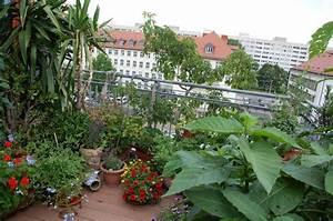 urban gardening gartnern in der stadt livona der bio blog With markise balkon mit stadt tapete