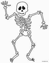 Skeleton Coloring Pages Human Drawing Printable Bones Halloween Sheet Cool2bkids Axial Drawings Getcolorings Getdrawings Paintingvalley sketch template