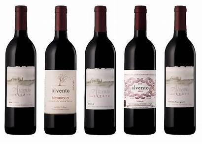 Wine Ontario Winery Niagara Wines Country Council