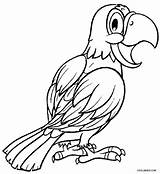 Parrot Coloring Printable Adults Cockatiel Parrots Fish Cool2bkids Colouring Sheets Bird Realistic Adult Getcolorings Drawings Designlooter Getdrawings Visit 750px 78kb sketch template