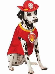 Paw Patrol Alle Hunde : marshall kost m f r hunde aus paw patrol funidelia ~ Watch28wear.com Haus und Dekorationen