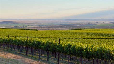 map washington wineries puget sound vineyard