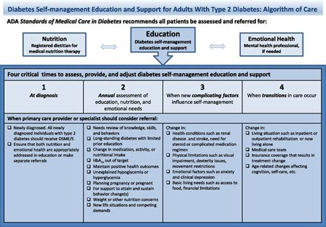 diabetes  management education  support  type