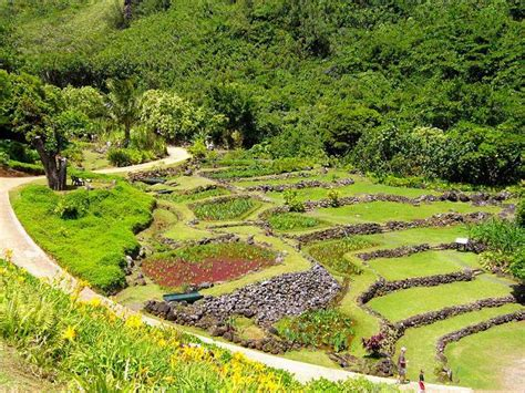 botanical gardens kauai limahuli garden and preserve one of the best botanical