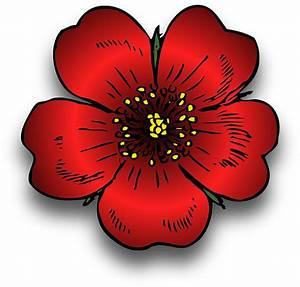 Welche Blumen Kann Man Essen : welche blumen und bl ten kann man essen ~ Watch28wear.com Haus und Dekorationen
