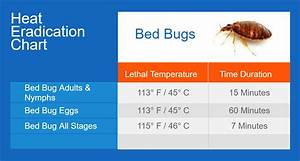 Bed bugs thermapure for Bed bugs temperature