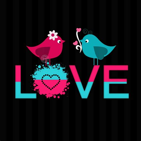 love bird mobile wallpaper  whatsapp dp love romance