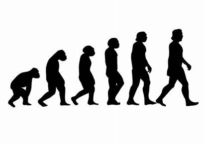 Progress March Origins Figure Evolution Human Prosper
