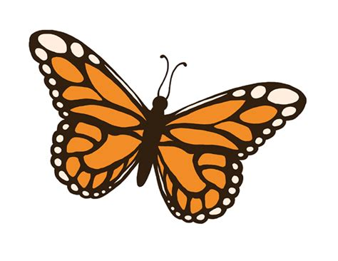 Insect Clipart Insect Clipart Best