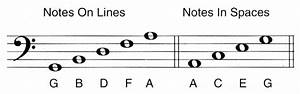 5 String Bass Notes Chart