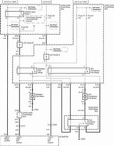 Acura Tl  2007 - 2008  - Wiring Diagrams
