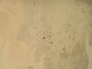 Décoller Papier Peint Sur Placo : decoller papier peint sur placo non 9 4 lzzyco moderne ~ Dailycaller-alerts.com Idées de Décoration