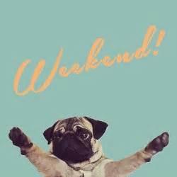 Happy Friday Weekend