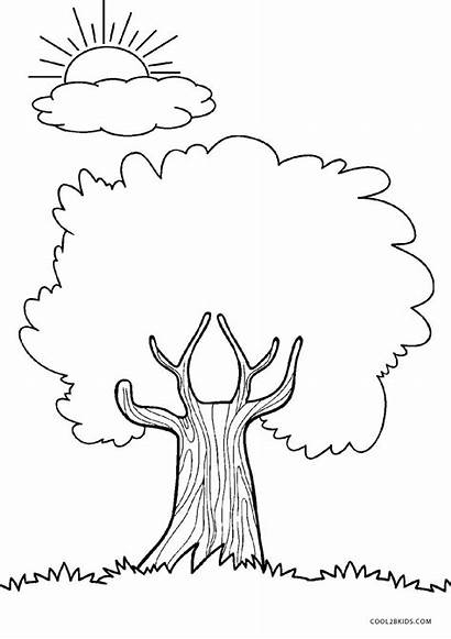 Coloring Tree Pages Trees Printable Printables Cool2bkids