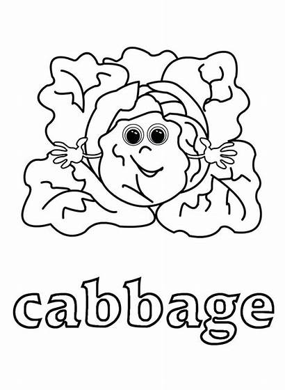 Cabbage Coloring Patch Pages Kale Vegetable Printable