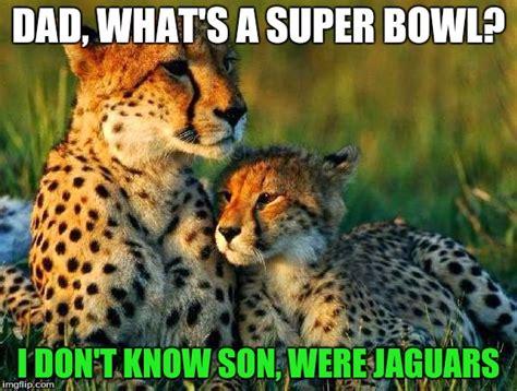 Jaguars Memes - jaguars fans be like imgflip