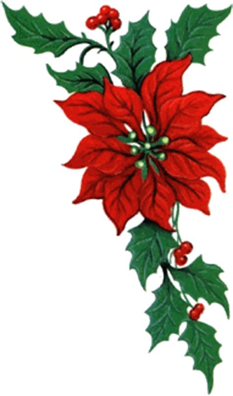 christmas flowers animated images gifs pictures