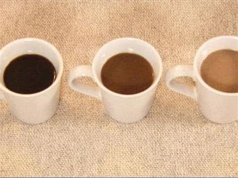 how to get coffee out of carpet how to get coffee stains out of carpets parker co