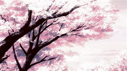 Flower Yoongi Min Aesthetic Scenery Animation Gifs