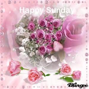 Happy Sunday Flowers