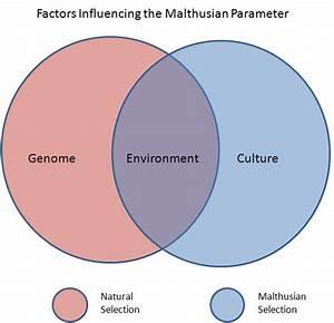 Malthus And Evolution