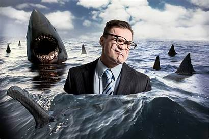 Shark Week Swimming Sharks Office Ocean Surrounded