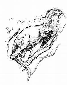 otter coloring pages - 229 best coloring pages for kids images on pinterest