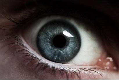 Eyes Iris Gifs Mundo Mata Purple Curiosidades