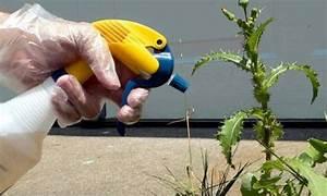 Désherbant Naturel Pour 600m2 : faire son d sherbant naturel pour le jardin astuce ~ Nature-et-papiers.com Idées de Décoration