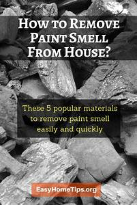 How to remove paint smell from house for How to remove odor from house