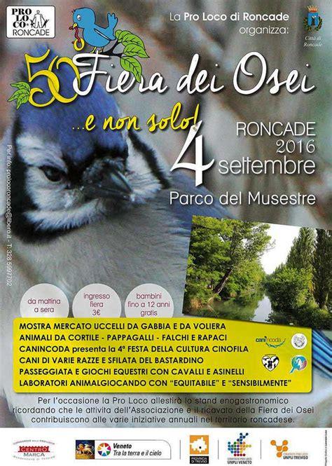 Mercato Animali Da Cortile Roncade 50 170 Fiera Dei Osei Fiera Degli Uccelli Mostra