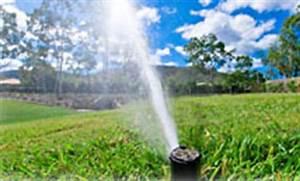 Quand Semer Du Gazon : la plantation du gazon en automne ~ Dailycaller-alerts.com Idées de Décoration