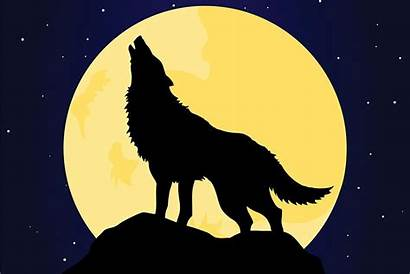Wolf Howling Moon Vector Night Dog Clip