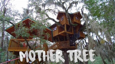 tree house  tiny house living  suwannee river  youtube