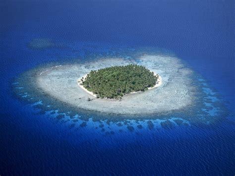 Wallpaper tropics, blue, ocean, coral, island, palm, reef ...