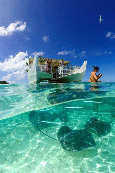 Feeding Stingrays In Bora Bora Island