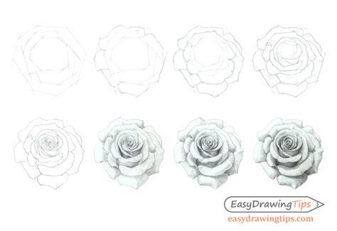 draw  rose step  step tutorial easydrawingtips