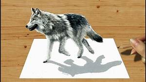 3d Pencil Drawing  Walking Wolf