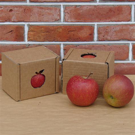 Miete Für Den Herz Apfel Garten Für 3 Apfel Rubinette Der Herzapfelhof Im Alten Land