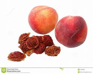 Peach Seeds Stock Photography - Image: 15502952