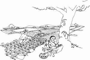 Libro control de plagas agricolas