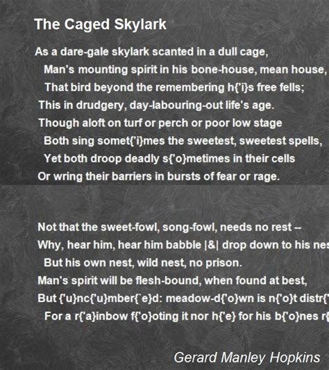 caged skylark poem  gerard manley hopkins poem hunter