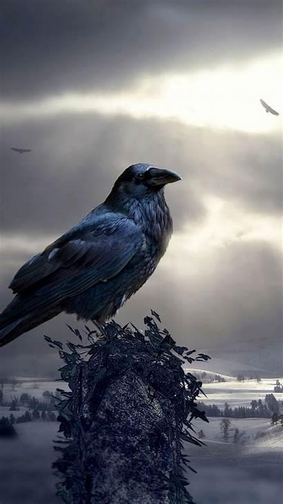 Raven Bird Photoshop Mystical Sculptures Iphone 6s