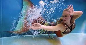 Professional Mermaids Make Quite The Splash  And Cash