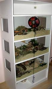 Meerschweinchen Gehege Ikea : die besten 25 hamsterk fig glas ideen auf pinterest igel k fig gerbil und hamster ~ Orissabook.com Haus und Dekorationen