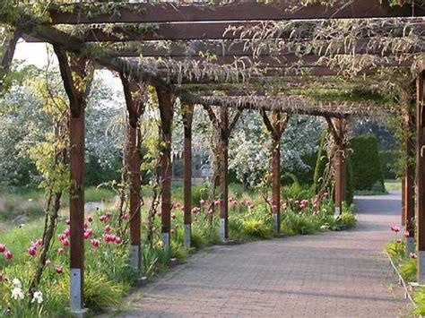 Botanischer Garten Hamburg Apfelfest by Botanischer Garten Hamburg Im Mai